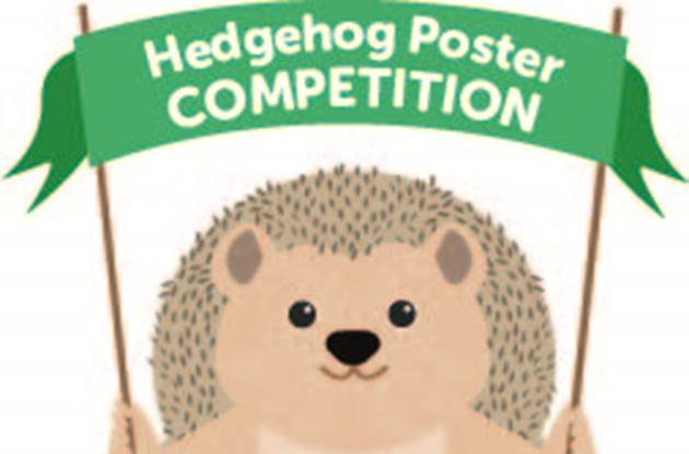 Hedghog For Hedgehog Competition