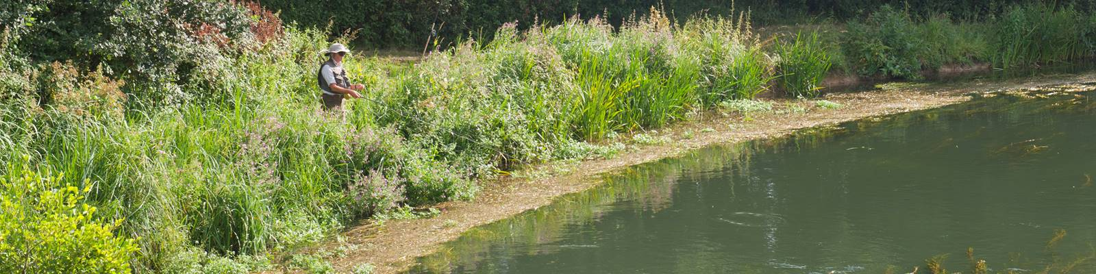 Itchen_Valley_Country_Park161.jpg (1)