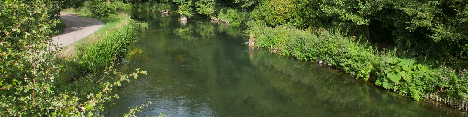 Itchen_Valley_Country_Park157.jpg