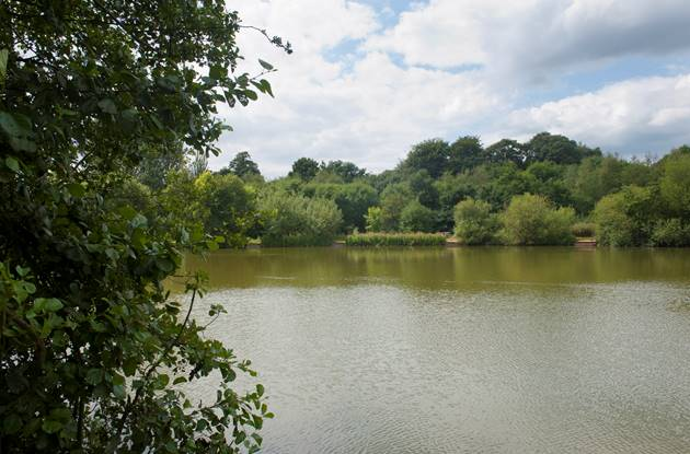 Lakeside_Country_Park5.jpg